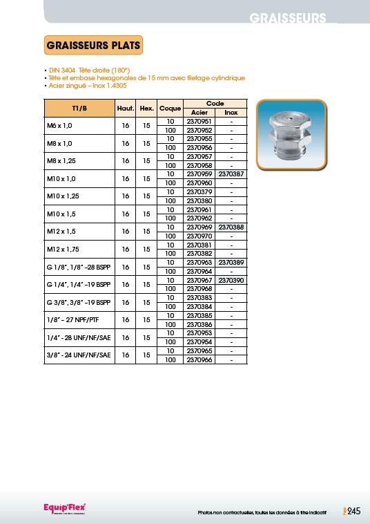 Graisseurs plats DIN 3404 Tête 15 mm Acier Inox